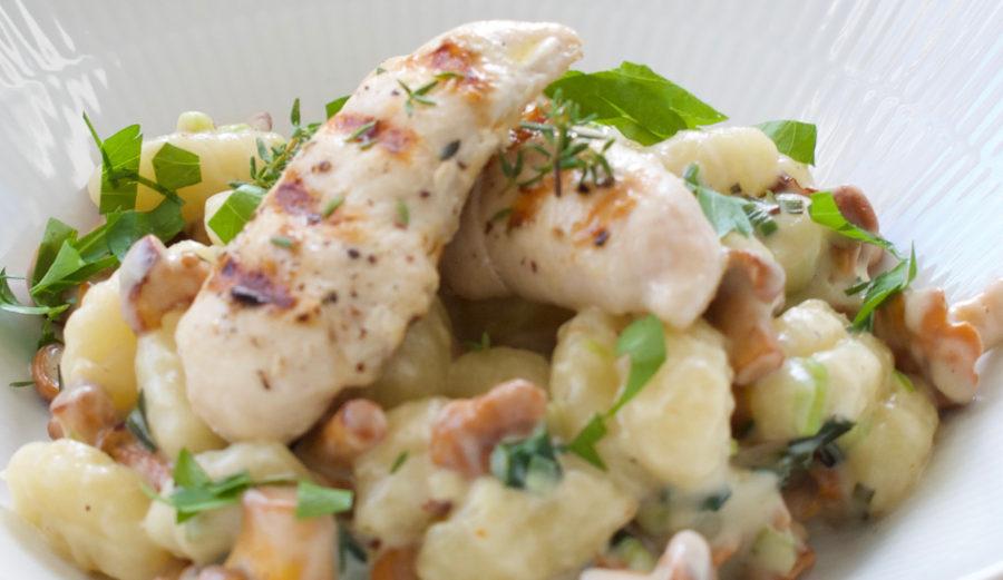 Flødekyssede kantareller med gnocchi og kylling
