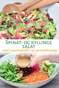 Spinatsalat med kylling, soyamandler og gomadressing
